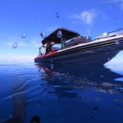 Nauti Nomad, boat dive, specialty