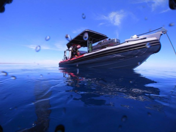 Open Water Course, Nauti Nomad, boat dive,specialty course, the dive shack, snorkel safari, adelaide, scuba, diving, snorkelling, spearfishing, freediving