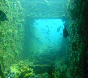 The Dredge, Local Dive sites, the dive shack, snorkel safari, adelaide, scuba, diving, snorkelling, spearfishing. freediving