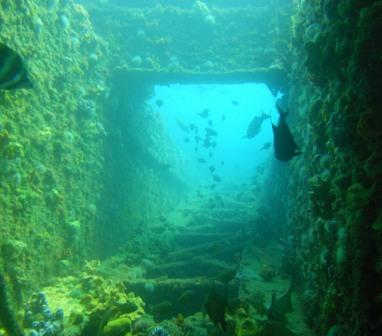Local Dive Sites - Adelaide Metropolitan - Dive Shack