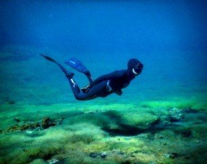 Freediving, the dive shack, snorkel safari, adelaide, scuba, diving, snorkelling, spearfishing