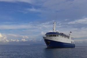 Taka - Solomon Islands, the Dive Shack, snorkel safari, adelaide, scuba, diving, snorkelling, spearfishing, freediving