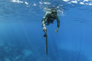 Freediving & Spearfishing