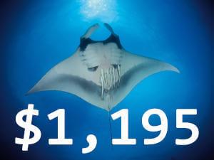 Natura29-price-res