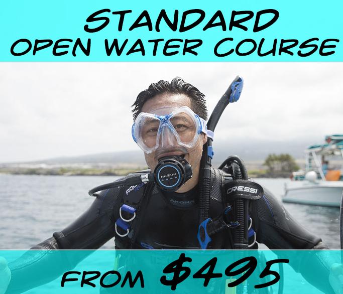 Open Water 2013